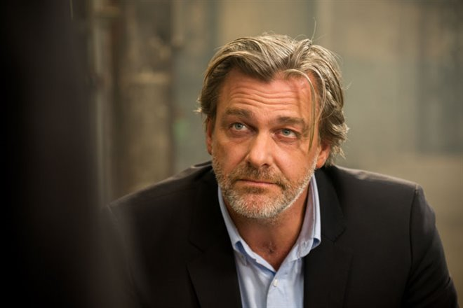 Ray Stevenson Income